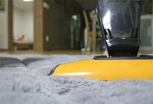 rug cleaning in westchester by professional cleaners